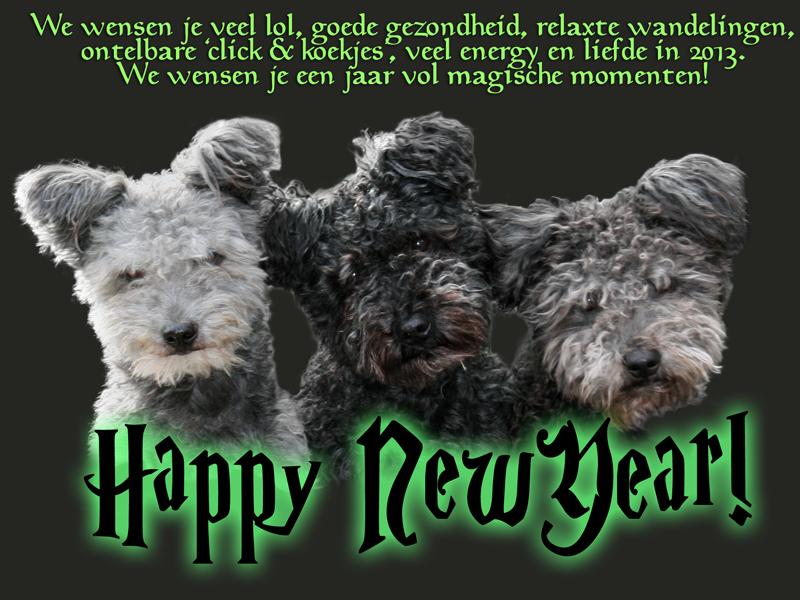 nieuwjaar2013c